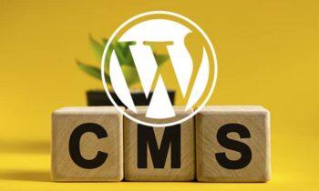 Comment reconnaitre un site wordpress ?
