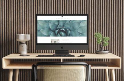 creation site web wordpress
